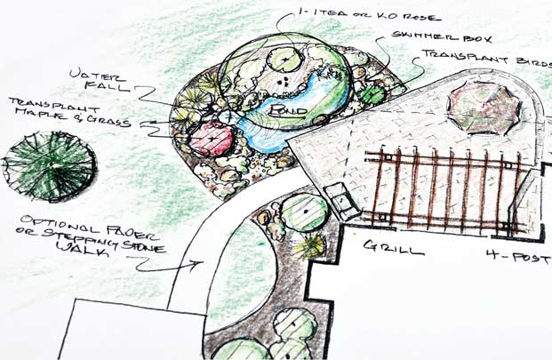 sketch on plain paper of a garden design